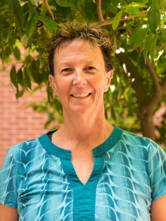 Theresa E Allison